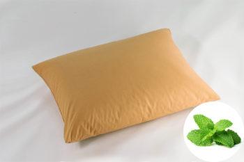 Perna Natural Memory Aroma Therapy Menta 30x40cm Orange