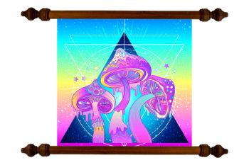 TANKA Mushrooms